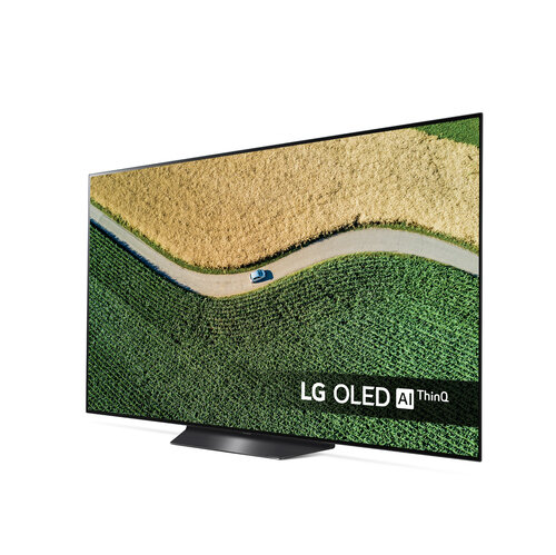 User Manual LG OLED55B9PLA (19 Pages