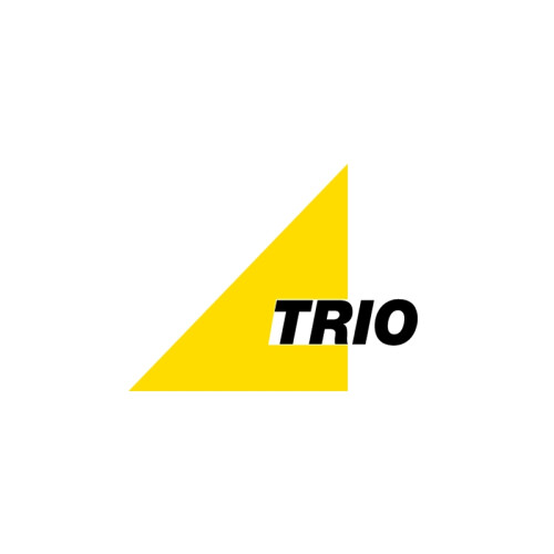 Trio Lighting Magno #2